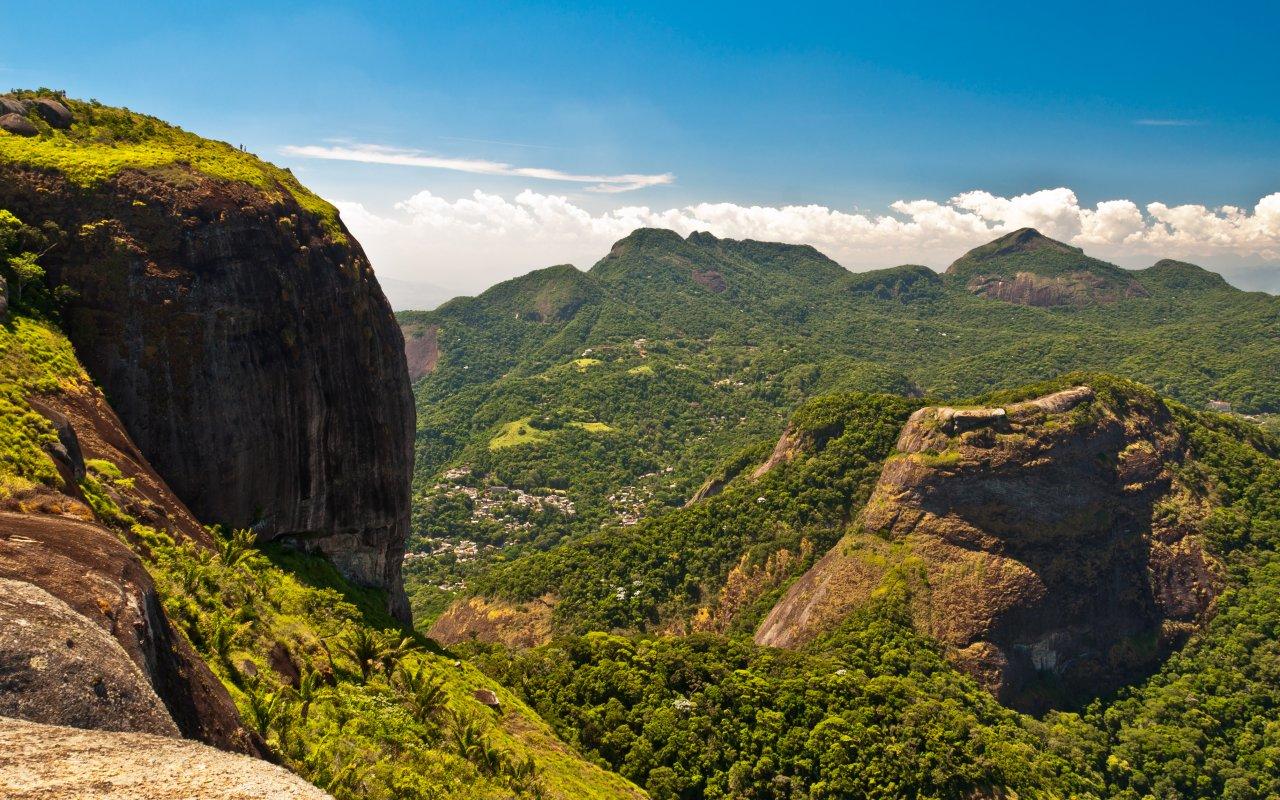 La forêt Tijuca près de Rio de Janeiro au Brésil