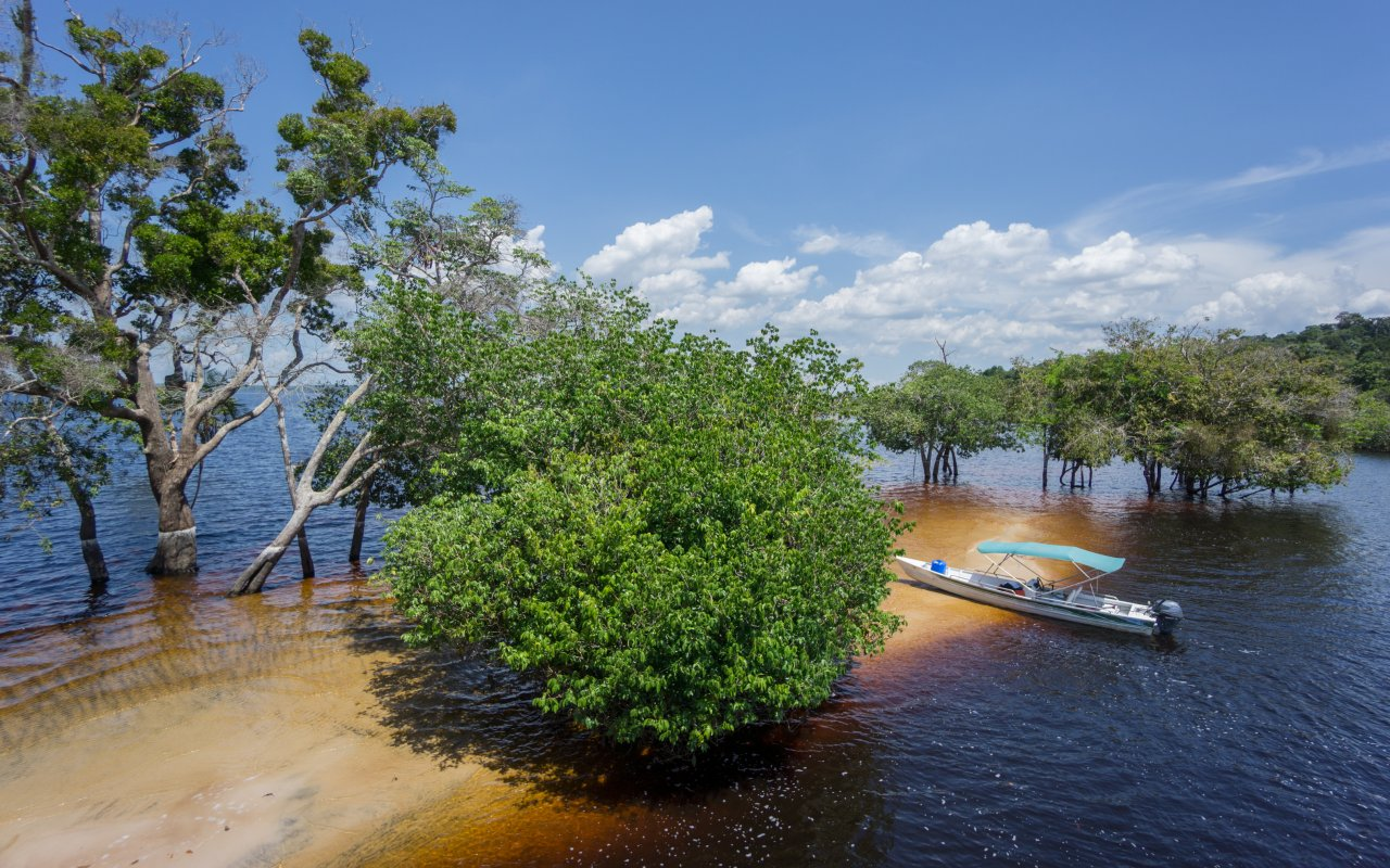 Croisière sur le Rio Negro en Amazonie