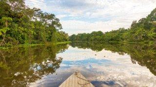 En bateau en Amazonie au Brésil