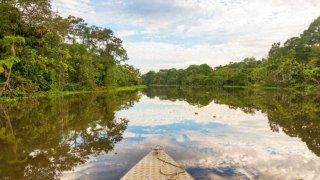 En bateau en Amazonie