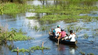 En pirogue en Amazonie au Brésil