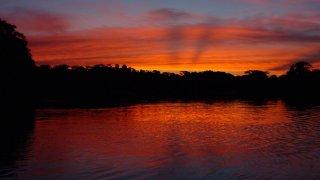 Coucher de soleil sur l'Amazonie