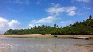 Plage sur l'ile de Boipeba au Brésil