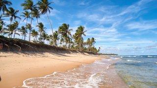 La plage Praia do Forte dans le Nordeste au Brésil