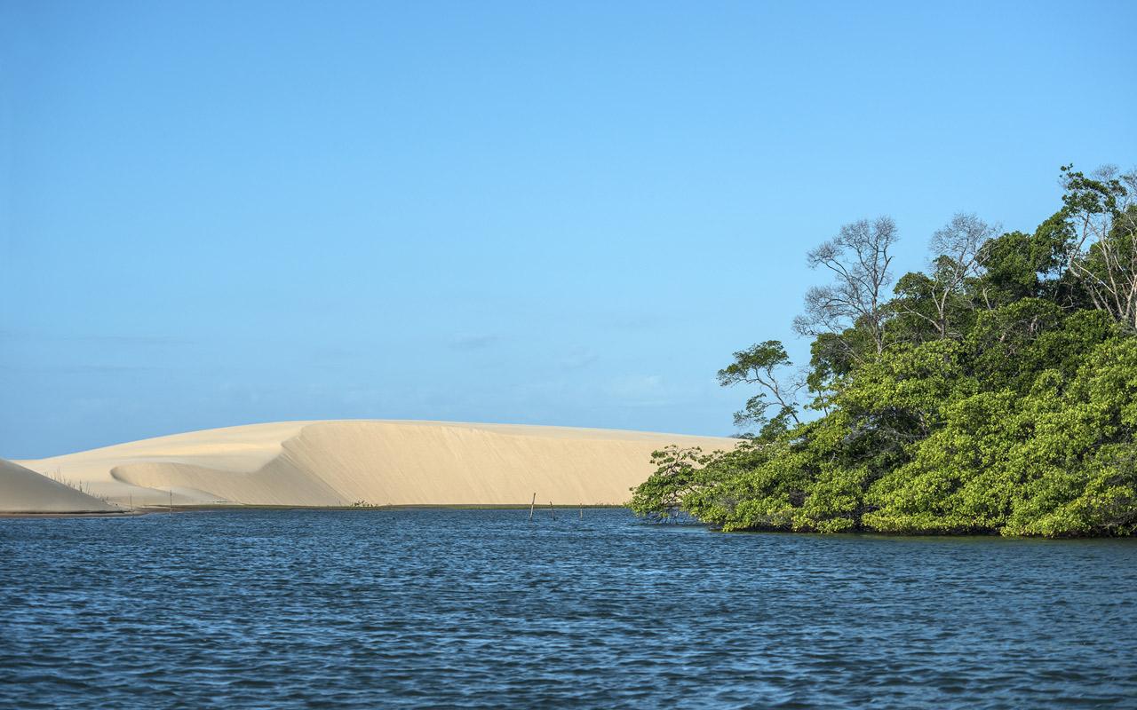 Dans le Delta du Parnaiba au Brésil