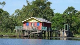 Petit village en Amazonie au Brésil