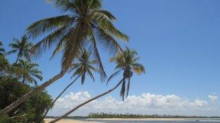 L'ile de Boipeba au Brésil