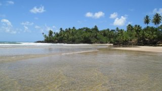 Plage sur l'ile de Boipeba dans le Nordeste