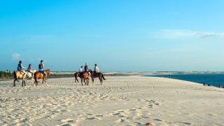 Balade à cheval dans le Parc des Lençois Maranhenses au Brésil