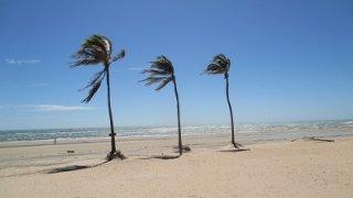 Les plages du Nordeste du Brésil