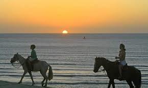 Balade à cheval en famille sur une plage du Brésil