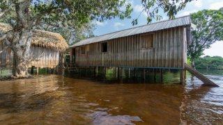 Habitation en Amazonie au Brésil