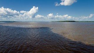 La rencontre des Eaux à Manaus en Amazonie au Brésil