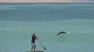Faire du Paddle à Pipa au Brésil