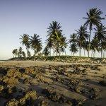 Praia de Maracajau, Rio Grande do Norte au Brésil