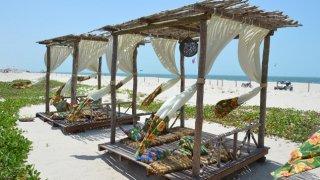 La plage de Prea dans le Nordeste au Brésil