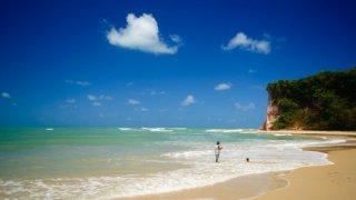 Praia da pipa dans le Nordeste au Brésil