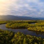 Voyage en Amazonie brésilienne